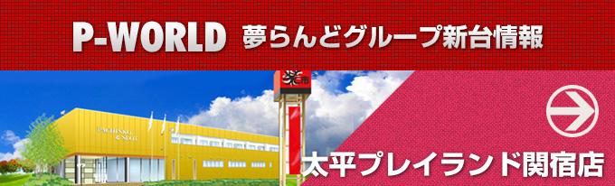 p-world太平プレイランド関宿店